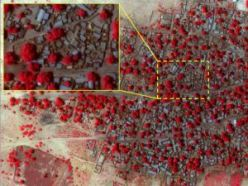 This satellite photo shows destruction allegedly caused by the Boko Haram in Nigeria. © Amnesty International